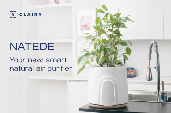 Natede Is Your Brand New Incredible Smart And Natural Air Purifier It Will Also Be The Most Beautiful Design Object You Ever Have For Home Or