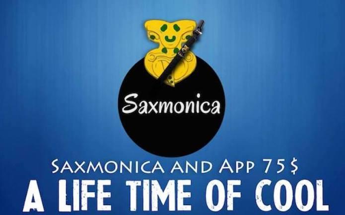 Saxmonica Pocket Saxophone | Indiegogo