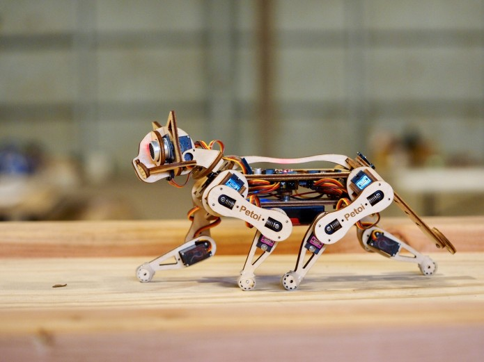 Build a Robotic Cat