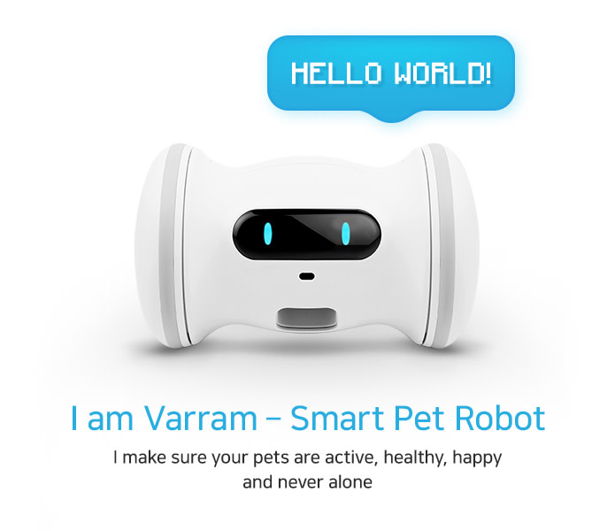 A Smart Robot For Your Pet - VARRAM | Indiegogo