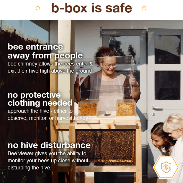 B-box: 1st Ever Hive Designed For Home Beekeeping   Indiegogo