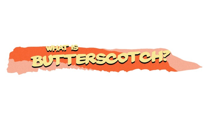Butterscotch - A Short Comedy Film | Indiegogo