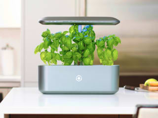 Ava byte smart simple sustainable indoor garden indiegogo for Indoor gardening documentary