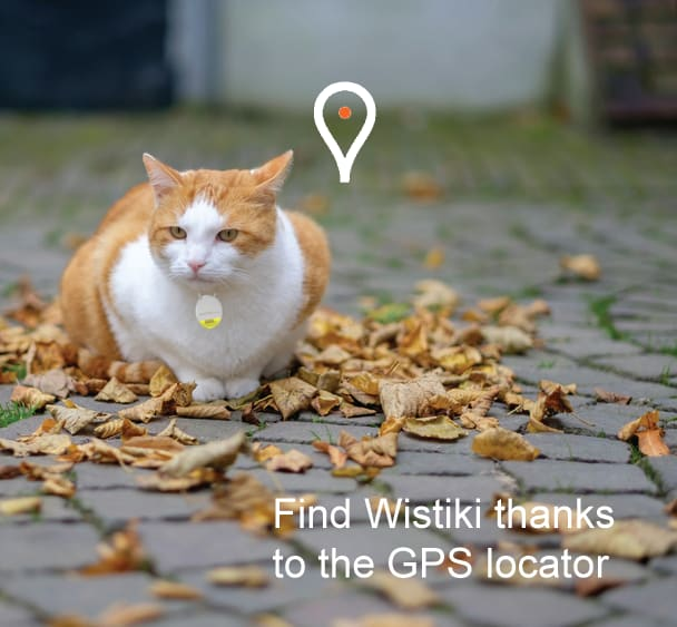 Wistiki The First Connected Jewels Ever Indiegogo - Gps trackers reveal the crazy distance our cats walk when they go out at night